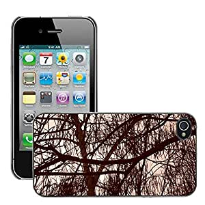 Hot Style Cell Phone PC Hard Case Cover // M00150597 Trees Sepia Branches Leaves Woods // Apple iPhone 4 4S 4G