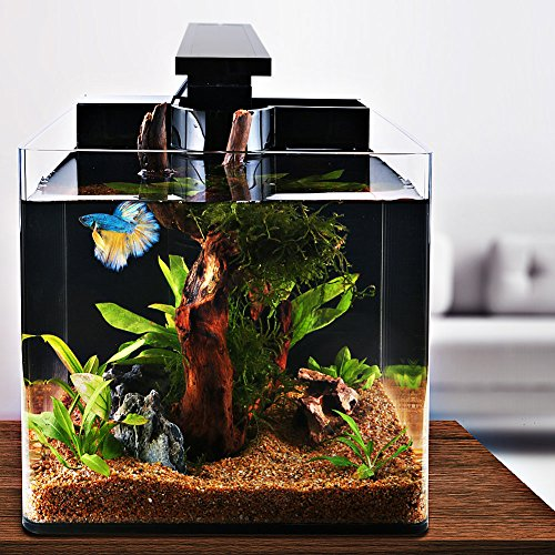 ISWEES Betta Fish Tank Complete Aquarium Kit, All Acrylic 4-Gallon, With Betta Fish Accessories - LED Lighting, Air Pump, Sponge Filter and Heater, Decorative Fish Aquarium Tank for Home and Office by ISWEES