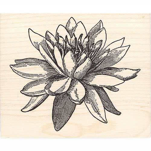 Large Water Lily Rubber Stamp - Blossom Lily Water Lotus
