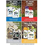 Roundup Concentrate Extended Control Weed & Grass