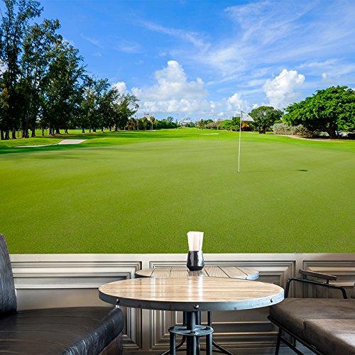 azutura Golf Fairway Wall Mural Golf Photo Wallpaper Sports & Hobbies Home Decor available in 8 Sizes Gigantic Digital