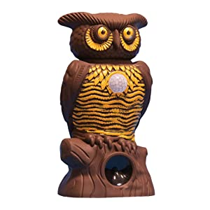 As Seen On TV Owl Alert Owl Statue — Pesticide-Free Pest Control — Targets Outdoor Pests Like Racoons, Deer, Rabbits, Squirrels, & Mice — Plastic Owl Statue with Light-Up Eyes for Fence & Garden