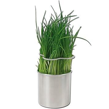 Lot 4 Pots A Herbe Plante Aromatique Inox Fines Herbes