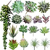 Maxzone - 16 unidades de suculentas artificiales para crear plantas suculentas realistas sin maceta, plantas suculentas falsas para decoración de jardín de loto, paisaje decorativo