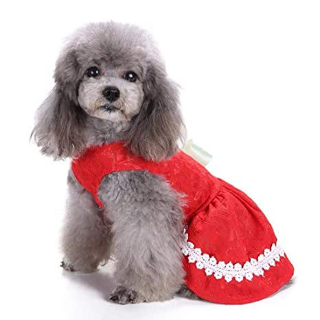 Amazon.com: Yevison - Ropa para mascotas, para cachorro ...