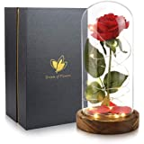 Christmas Rose Gift for Her, Beauty and The Beast Rose, Artificial Flowers, Birthday Presents for Women, Glass Dome Brown Woo