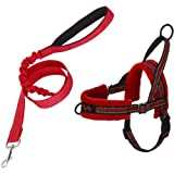 SlowTon No Pull Small Dog Harness and Leash, Front Lead Walk Vest Harness Soft Padded Reflective Adjustable Puppy…