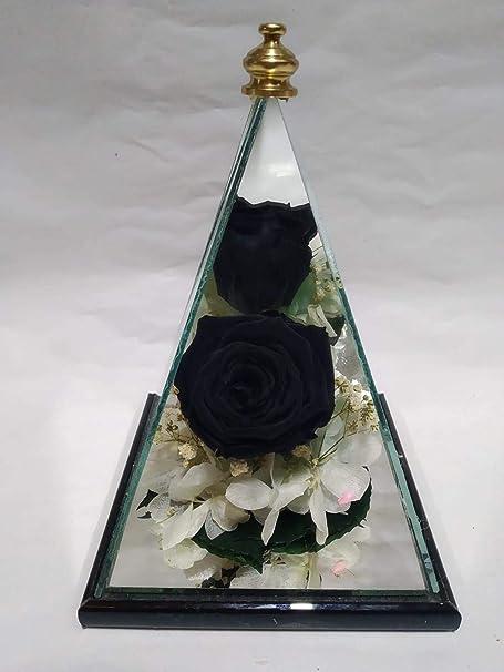Rosa eterna Negra. Pirámide Artesanal de Cristal y Fondo de Espejo. Rosa preservada Natural Negra sobre Verdes y Flor preservada. Hecho por Artesanos en España.: Amazon.es: Hogar