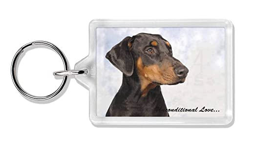 Doberman Pinscher - Con Amor Foto llavero animal de regalo ...