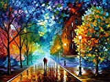(US) Fipart 5D DIY Diamond Painting Cross Stitch Craft Kit Wall Stickers for Living Room Decoration (12X16inch/30X40cm)Oil painting lover