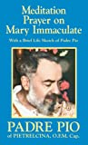 Meditation Prayer on Mary Immaculate