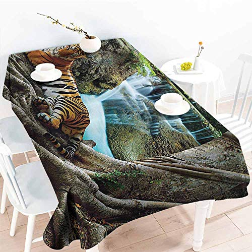 Halo Scout Costumes - FANOEWI Creative Rectangle Tablecloth Masquerade Decorations