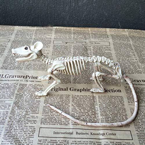 Party DIY Decorations - Nice Skeleton Rat 100 Plastic Animal Bones Decoration - Miniatures Animal Plastic Bones Halloween Party Decorations Witch Decor Horror Halloween Mask Plastic Skeleton Tsh