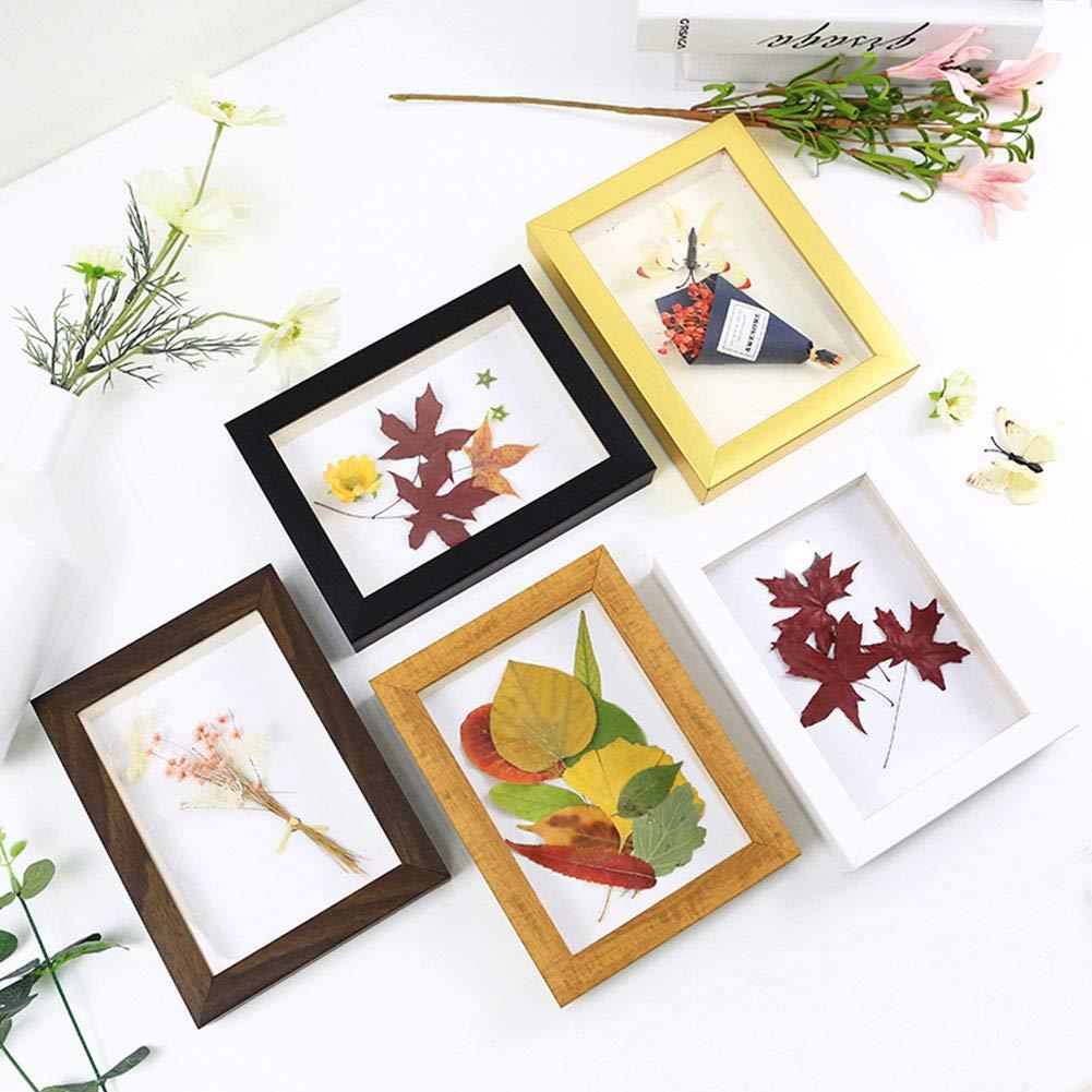 WANDIC Flower Press Kit 1 Set Wooden Handicrafts Plant Press Craft Punch Wooden Art Kit Outdoor Play Learning Toy for DIY Art Handicraft