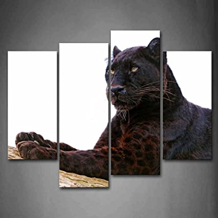 Amazon Com First Wall Art Black Panther Lie On Dry Wood Wall Art