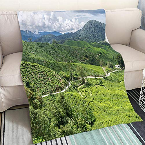 - BEICICI Art Design Photos Cool Quilt Cameron Highlands Malaysia Living Room/Bedroom Warm Blanket