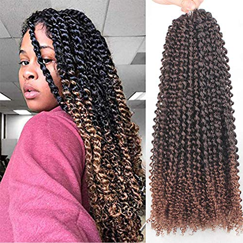 Xtrend 6 Packs 18 inch 22 Strands/Pack Passion Twist Hair Water Wave Crochet Braiding Hair Bohemian Crochet Braids Pre Looped Synthetic Fiber Natural Hair Extension T30 (Two Strand Twist Styles For Little Girls)