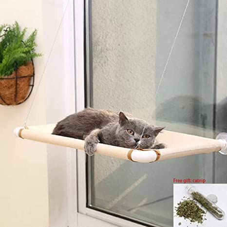 Itept Diy Cat Sunbath Bed Sunny Seat Window Perch Pet Resting Seat Shelves Hammock Suction Cups Mounted Large Kitties Sunny Bed Up To 55lb White
