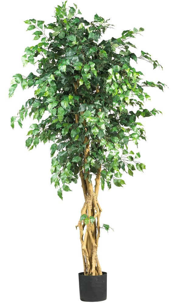 Nearly Natural 5216 Palace Style Ficus Silk Tree, 6-Feet, Green by Nearly Natural