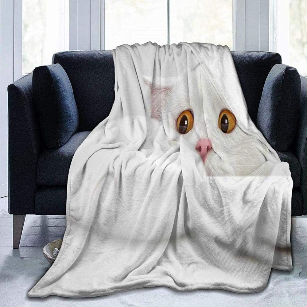 lucky-bonbon Animales Fondo Gatos Ordenadores Ojos Divertidos ...