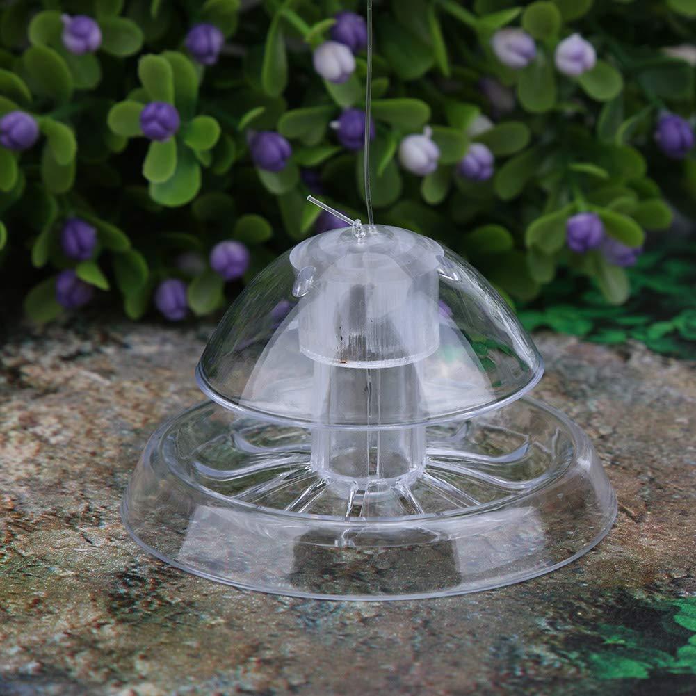 Powlance Acuario pecera plástico Transparente atrapa Caracoles Plantas Pest Catch Box: Amazon.es: Productos para mascotas