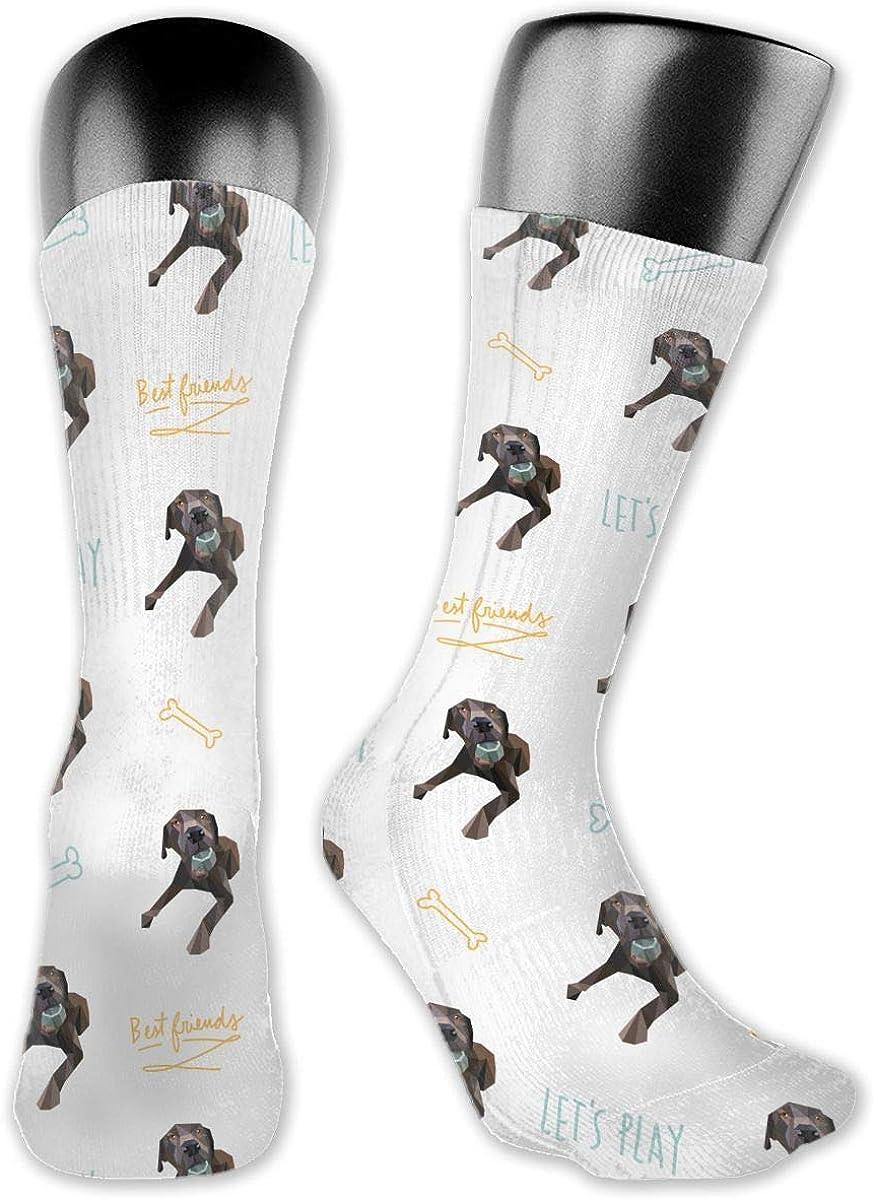 Casual Chocolate Lab Labrador Dog Socks Cotton Dress Socks For Men Women