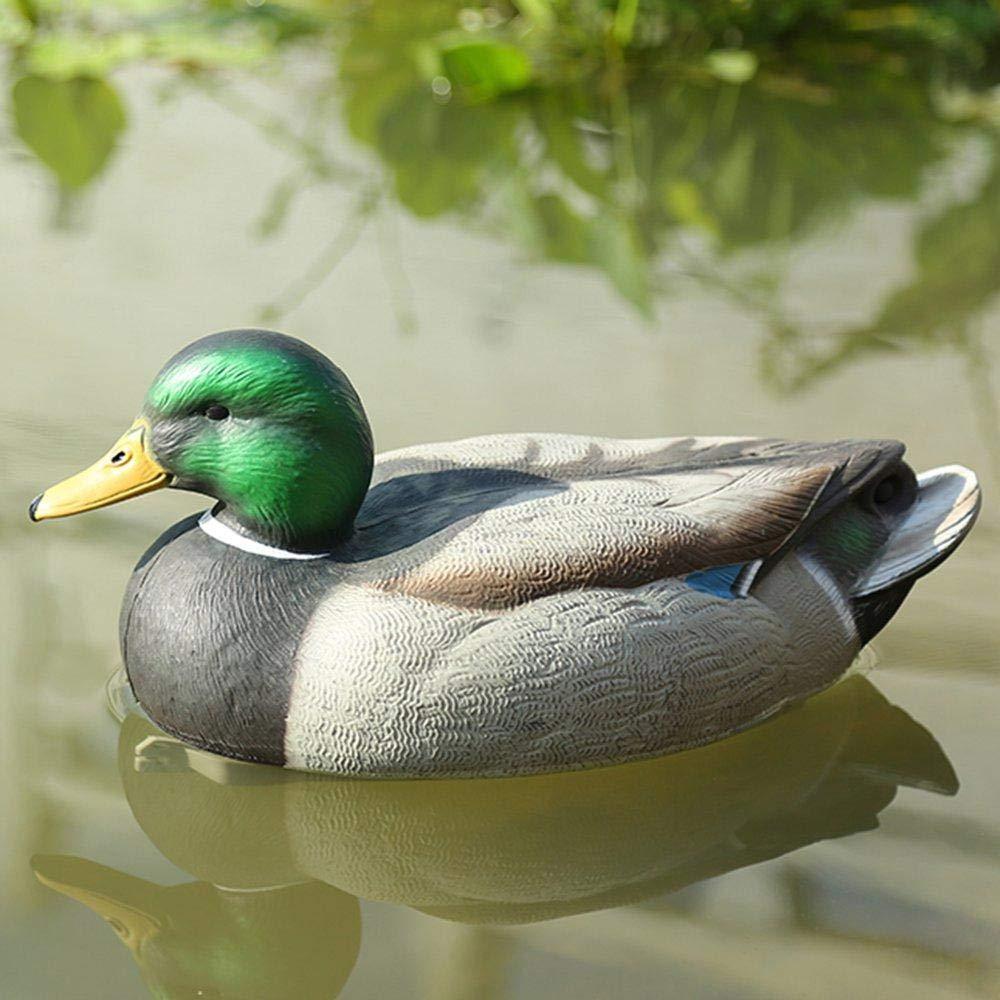 Hamkaw Leurres de Canard R/éalistes Leurres Classiques de Colvert pour D/écorations D/étangs de Jardin