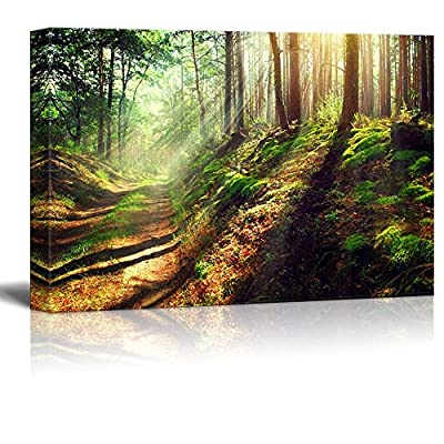 Canvas Prints Wall Art - Beautiful Scene of Misty Old Path in Forest on an Sunny Autumn Morning | Modern Wall Decor/Home Art Stretched Gallery Canvas Wraps Giclee Print & Ready to Hang - 24
