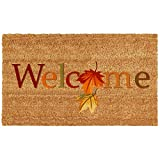 Home & More 121301729 Fall Beauty Doormat, 17'' x 29'' x 0.60'', Multicolor