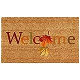 Home & More 121301729 Fall Beauty Doormat, 17'' x 29'' x 0.60'', Multicolor