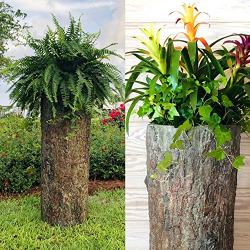 Bushy Box  Large Hollow Log Planter. Outdoor Garden, Yard & Porch Pot. Tall Tree Stump Well Pump Cover. Weatherproof, Rustic, Natural Looking Deck & Patio Decor. Better Than a Fake Rock. ()