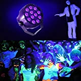 DeepDream 12W Black Light DJ Blacklights UV LED Lamp Auto Lighting Voice Control Party Spotlight Wedding Disco Club