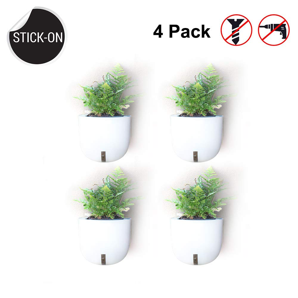 (No Screw/No Hanging) Wall Planters Vase Stick-up Design Moveable Reusable Use,Indoor and Outdoor Plastic Wall Plants Holder for Succulent Herb Pots Flower Vase Air Plant,4 Pack (Not Included Plants) 61vU8bsFMWL