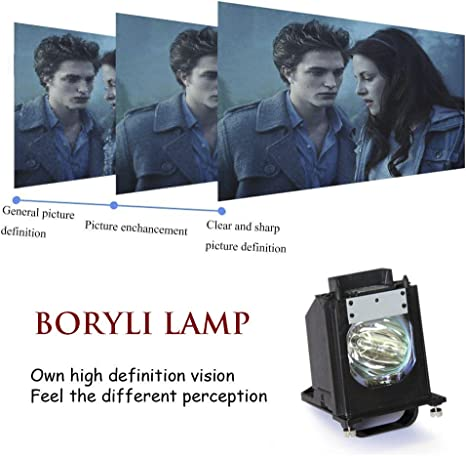Boryli 915P061010 Replacement Lamp with Housing for Mitsubishi TV