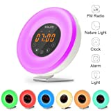Wake Up Light Alarm Clock,Salute Sunrise Simulator Alarm Clock ,6 Nature Sounds, FM Radio, Touch Control, Sunset Simulation ,7 Color Night Light ,11 Mode Brightness ,Smart Snooze Function With USB Charger for Heavy Sleepers