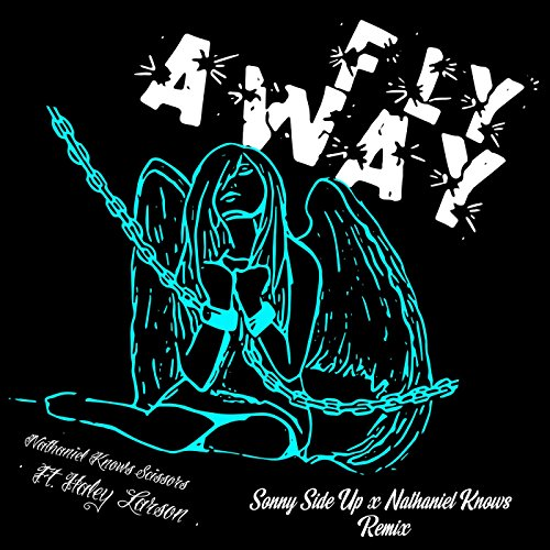 Fly Away (feat. Haley Larson) [Sonny Side up X Nathaniel Knows Remix]