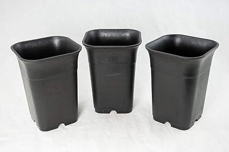 Amazon Com 3 Square Plastic Cascade Bonsai Pot Succulent Orchid Planter 4 X 4 X 5 5 Kitchen Dining