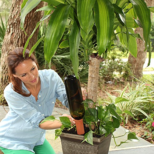Plant-A-Bottle (Set of 4 Indoor Plant Watering Devices) Vacation Plant Watering, *NEW IMPROVED PACKAGING* Water Plants and Recycle Bottles – Drip Irrigation Spikes, House Plant Self Watering System