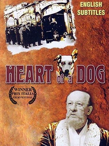 Heart of a Dog - Dog Heart
