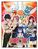 GE Animation GE-57699 Fairy Tail Group Throw Blanket, 46'' x 60''