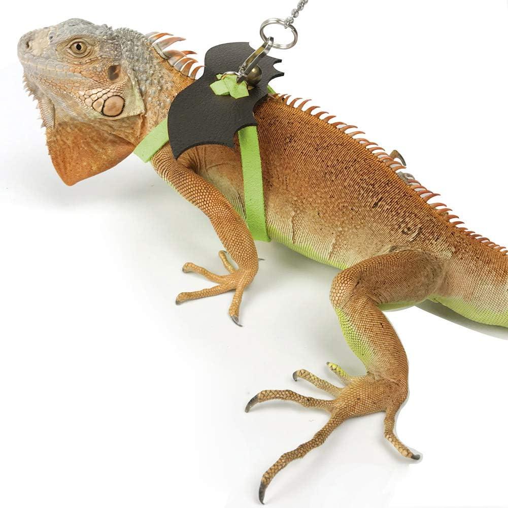 Real Iguana Skin Keychain