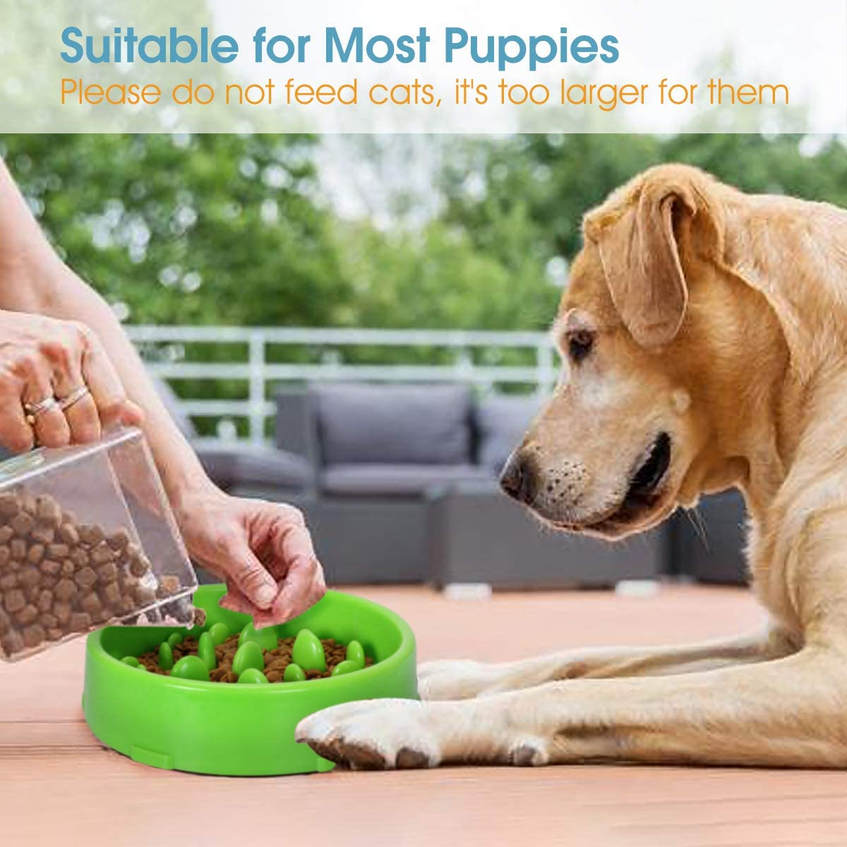 WHIPPY Fun Slow Feeder Dog Bowl Upgrade Non Slip Puzzle Bowl Fun Feeder Interactive Bloat Stop Dog Bowl /…
