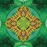 Celtic Vedic