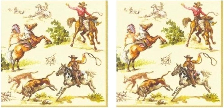 Wild West Cowboys 3-Ply Paper Cocktail Napkins 40-Count, Western Ranch Barware Beverage Serviettes
