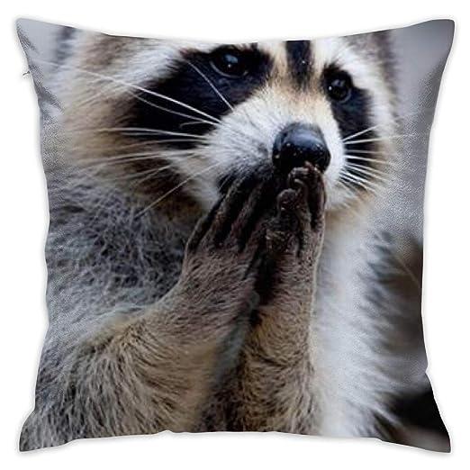 DIY Pillow Covers Funda de cojín de algodón con Estampado ...