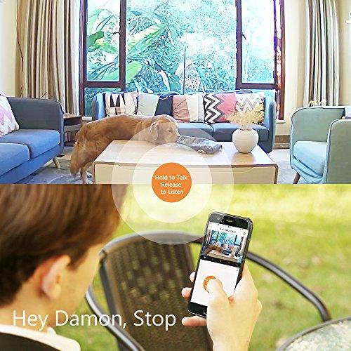 IP Camera, ANNKE Nova S 1080P HD WiFi Wireless Security Camera, Work with Amazon Alexa, Two-Way Audio, Cloud Service Available