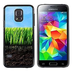 TopCaseStore / la caja del caucho duro de la cubierta de protección de la piel - Nature Beautiful Forrest Green 136 - Samsung Galaxy S5 Mini, SM-G800, NOT S5 REGULAR!