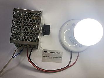 Professionelle Spannungsregler 4000 Watt 220 V Hochleistung Scr