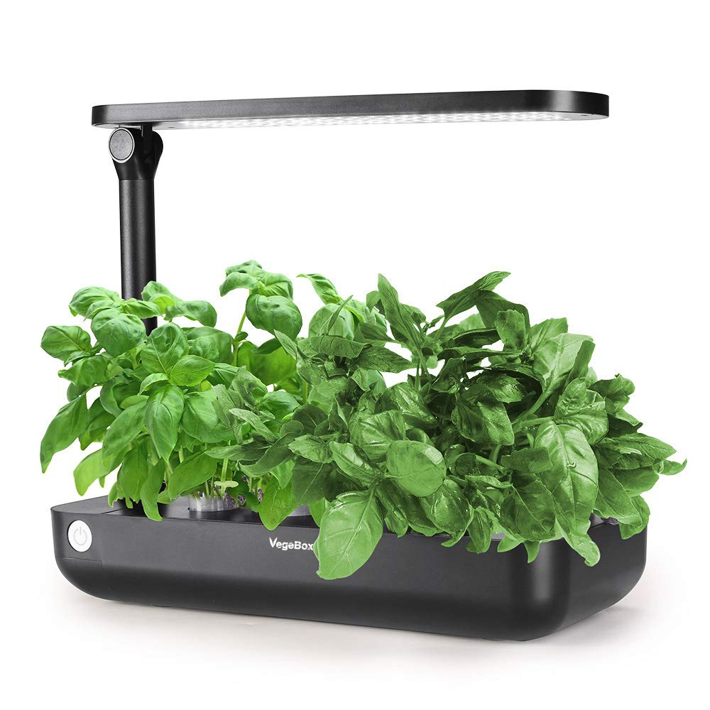 Hydroponics Growing System,Support Indoor Grow,Grow Smart for Plant, Built Your Indoor Garden (Small-Black) by VegeBox