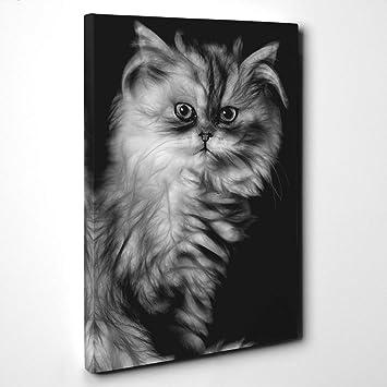 Lienzo de pie gato persa y figuras 2, madera, multicolor, 101 x 71 x 3 cm: Amazon.es: Hogar